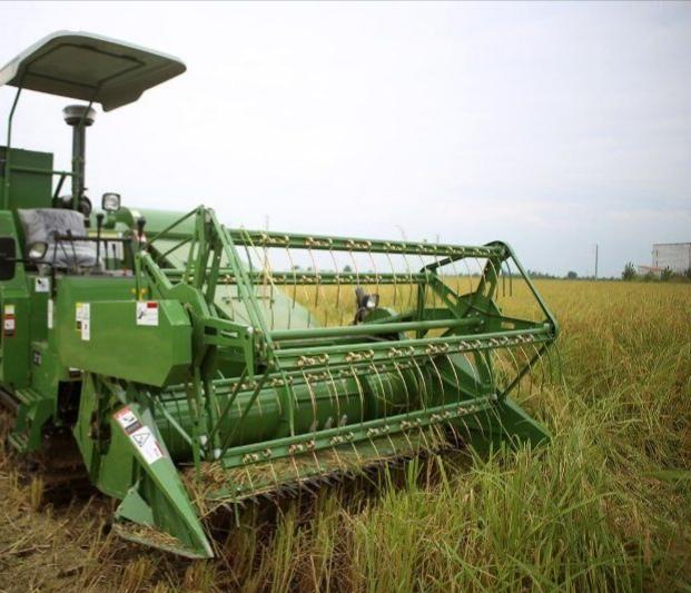 نخستین برداشت مکانیزه برنج سال جاری در گیلان انجام آغازشد.