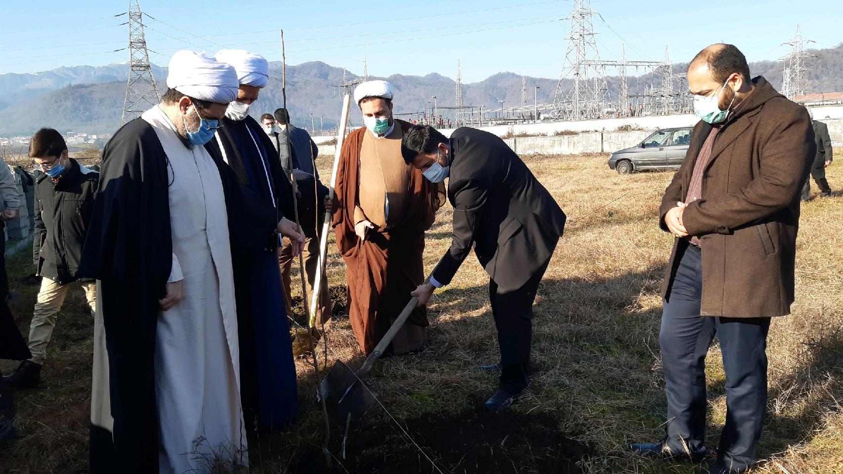 کاشت۵ هزار اصله نهال در موقوفات گیلان آغاز شد.